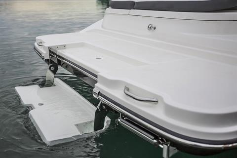 2017 Sea Ray SDX 270 in Holiday, Florida