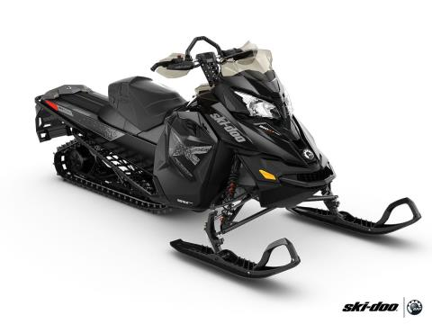 2016 Ski-Doo Renegade Backcountry X 800R E-TEC Powdermax 2.0