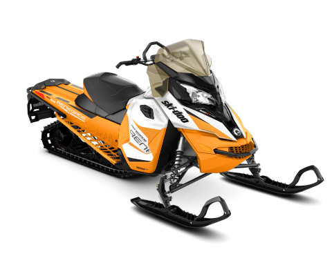 2017 Ski-Doo Renegade Backcountry 800R E-TEC E.S. in Hotchkiss, Colorado