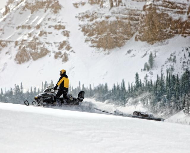 2018 Ski-Doo Expedition Sport 550F in Bozeman, Montana