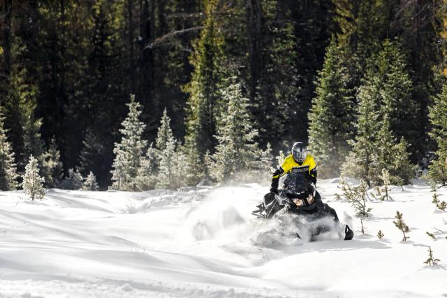 2018 Ski-Doo Skandic WT 600 HO E-TEC in Moses Lake, Washington