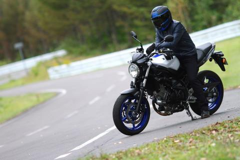 2017 Suzuki SV650 in Greenville, North Carolina
