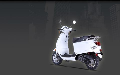 2015 Wolf Brand Scooters Wolf Lucky II in New Haven, Connecticut
