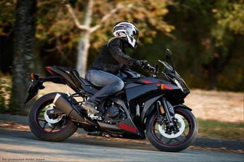 2015 Yamaha YZF-R3 in Monroe, Washington