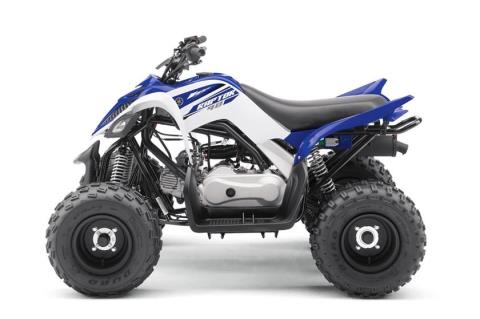 2017 Yamaha Raptor 90 in Port Washington, Wisconsin