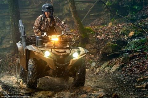 2017 Yamaha Grizzly EPS in Florence, Colorado