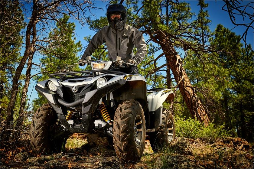 2017 Yamaha Grizzly EPS SE in Centralia, Washington