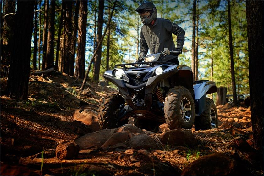 2017 Yamaha Grizzly EPS SE in Florence, Colorado