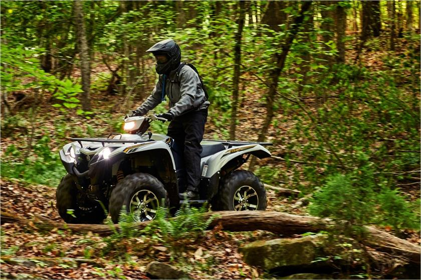 2017 Yamaha Grizzly EPS SE in Hobart, Indiana