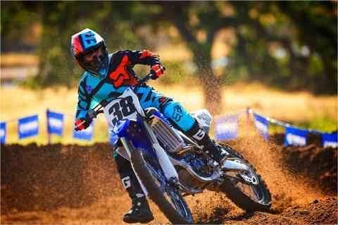 2017 Yamaha YZ250F in Twin Falls, Idaho
