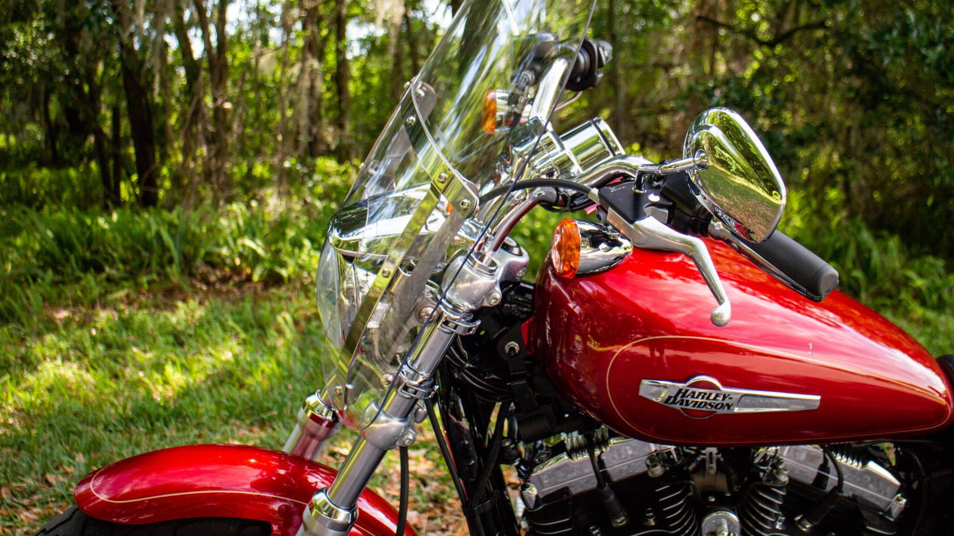 2013 Harley-Davidson XL1200CP in Lakeland, Florida - Photo 5