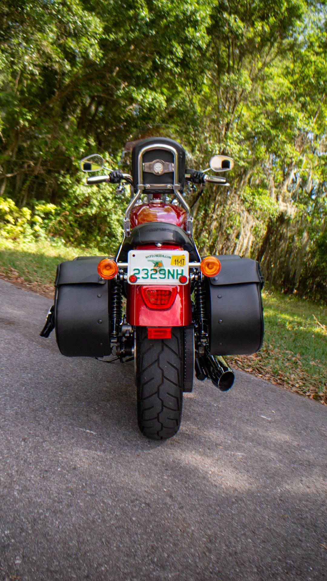 2013 Harley-Davidson XL1200CP in Lakeland, Florida - Photo 12
