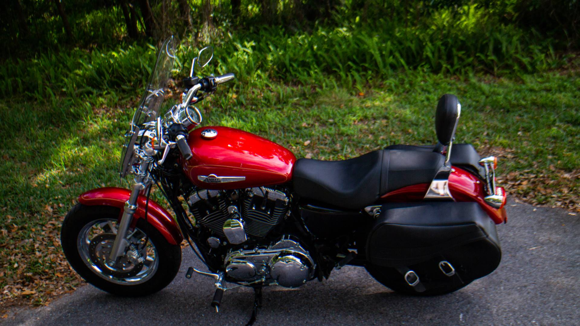 2013 Harley-Davidson XL1200CP in Lakeland, Florida - Photo 25