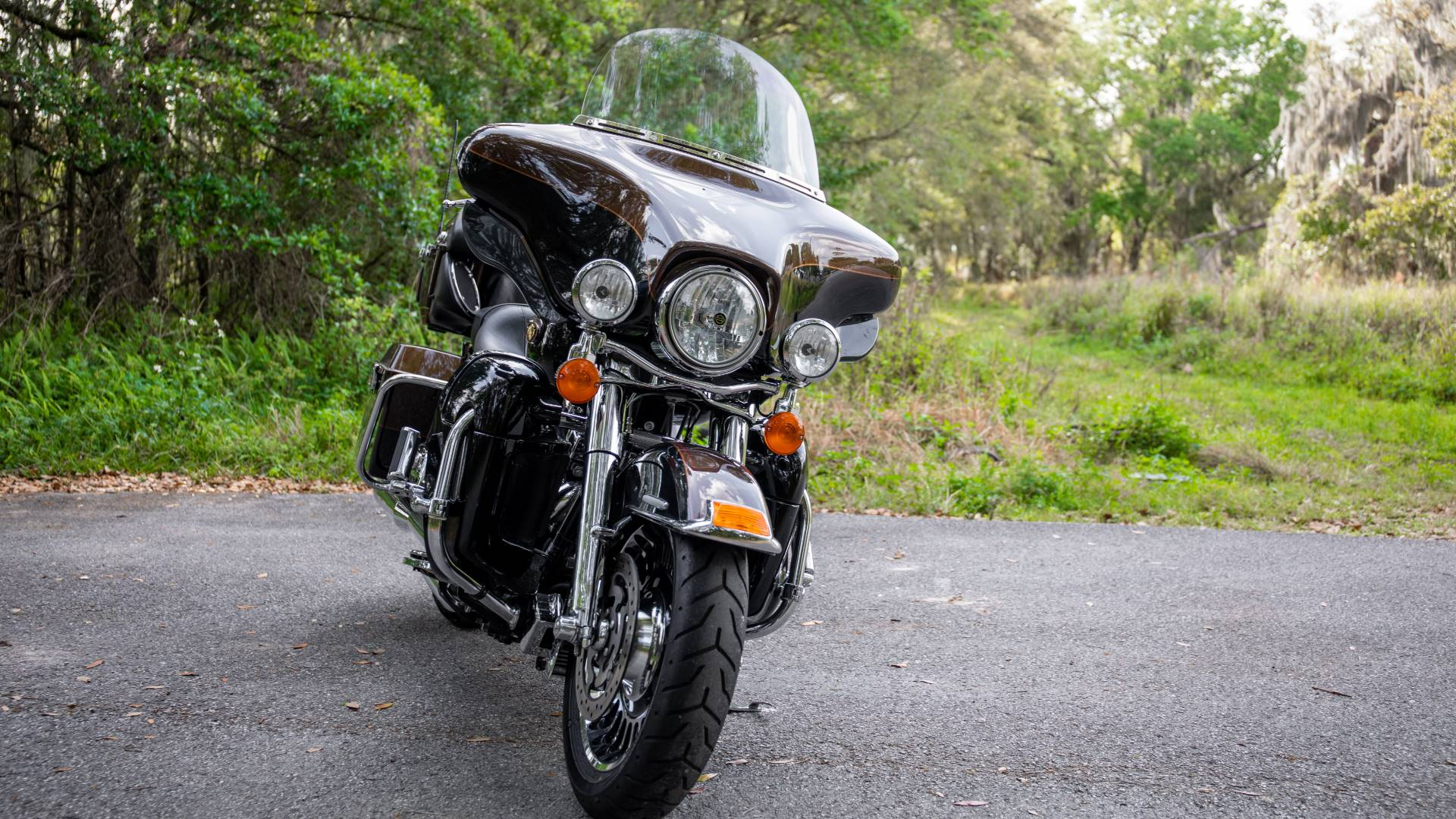 2013 Harley-Davidson Electra Glide® Ultra Limited 110th Anniversary Edition in Lakeland, Florida - Photo 29