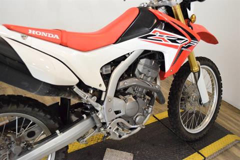 2015 Honda CRF®250L in Wauconda, Illinois - Photo 7