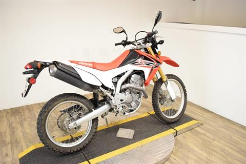 2015 Honda CRF®250L in Wauconda, Illinois - Photo 10