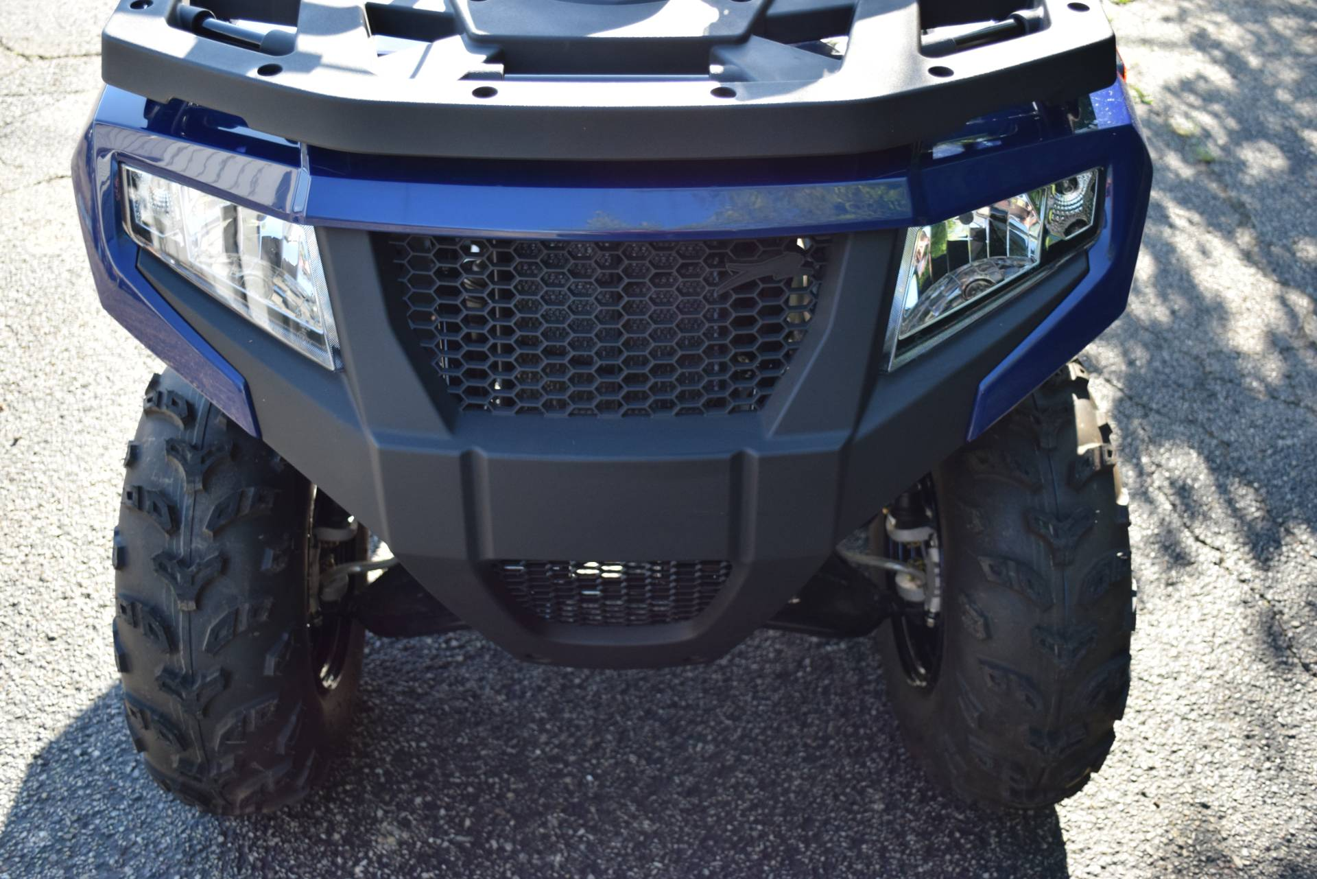 2019 Textron Off Road Alterra 300 in Wauconda, Illinois - Photo 13