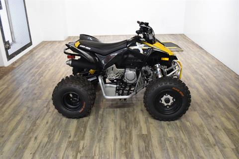 2013 Can-Am DS 90™ X® in Wauconda, Illinois