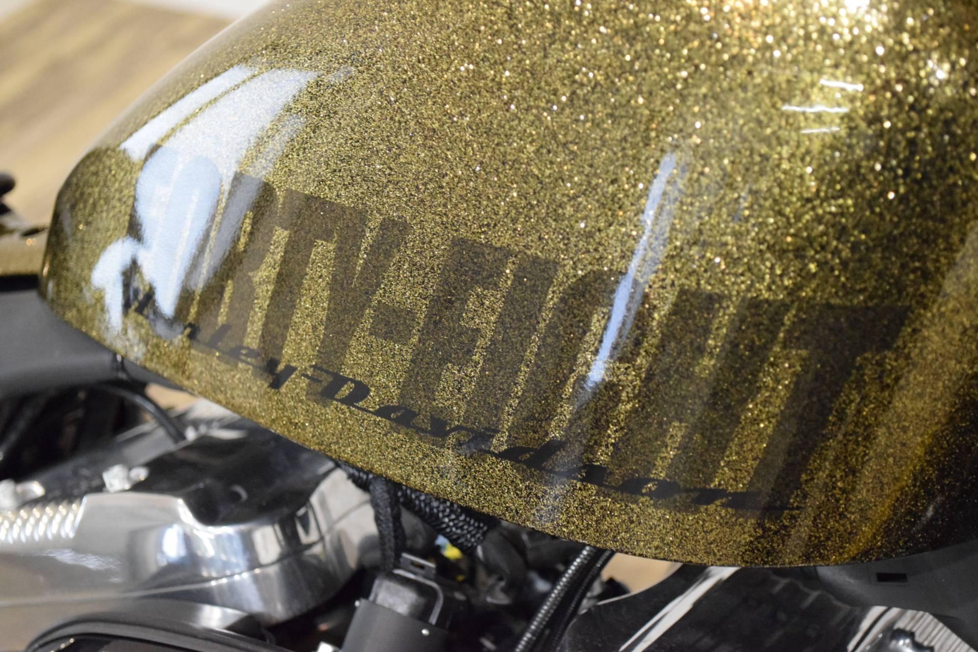 2013 Harley-Davidson Sportster Forty-Eight 5