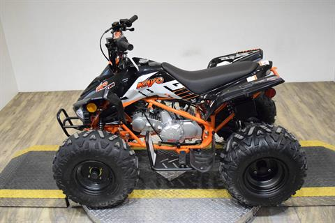 2020 Kayo Predator 125 in Wauconda, Illinois - Photo 6