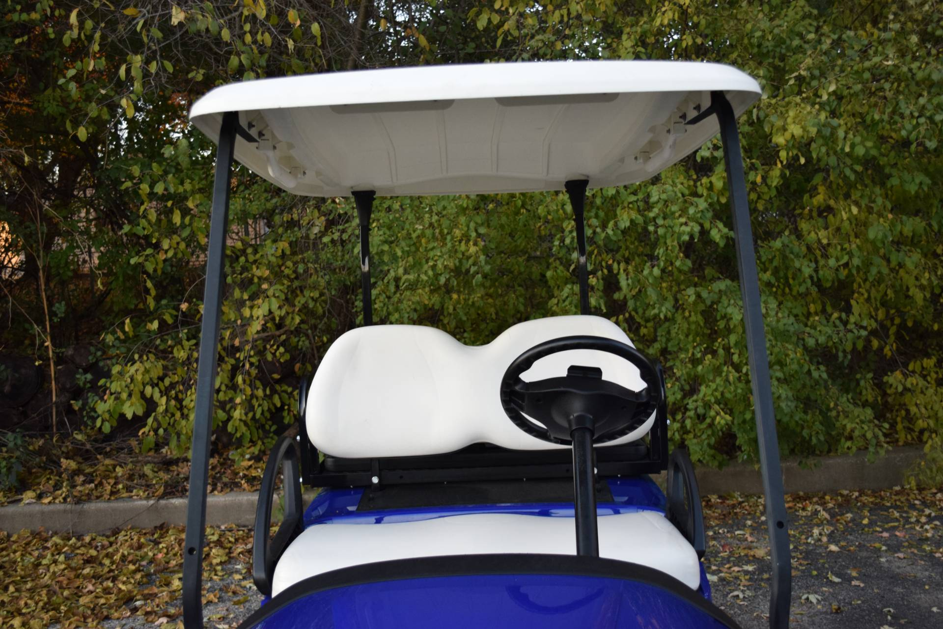 2017 Club Car Precedent i2 Electric in Wauconda, Illinois - Photo 13