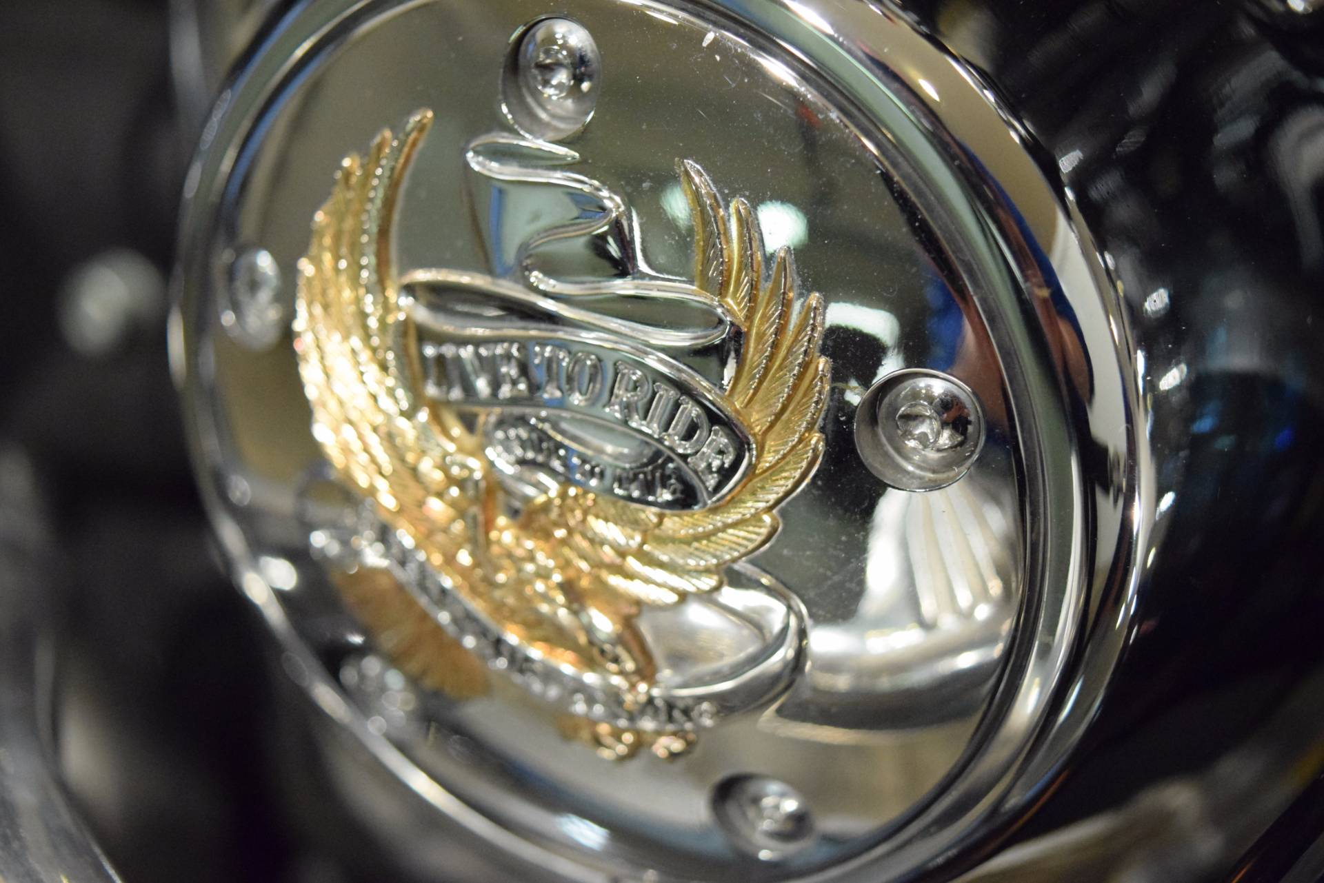 2009 Harley-Davidson Dyna Low Rider 7