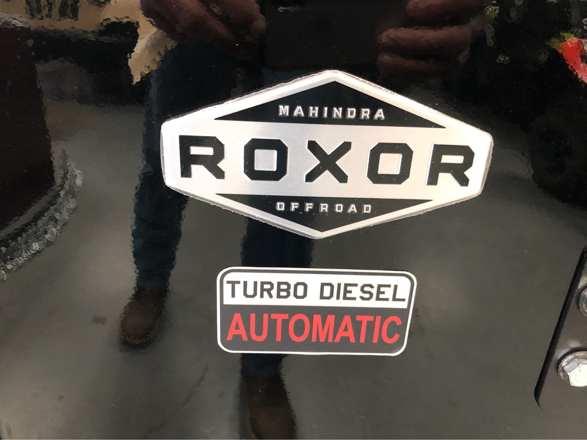 2019 Mahindra Automotive North America ROXOR Offroad A/T in Saucier, Mississippi - Photo 2