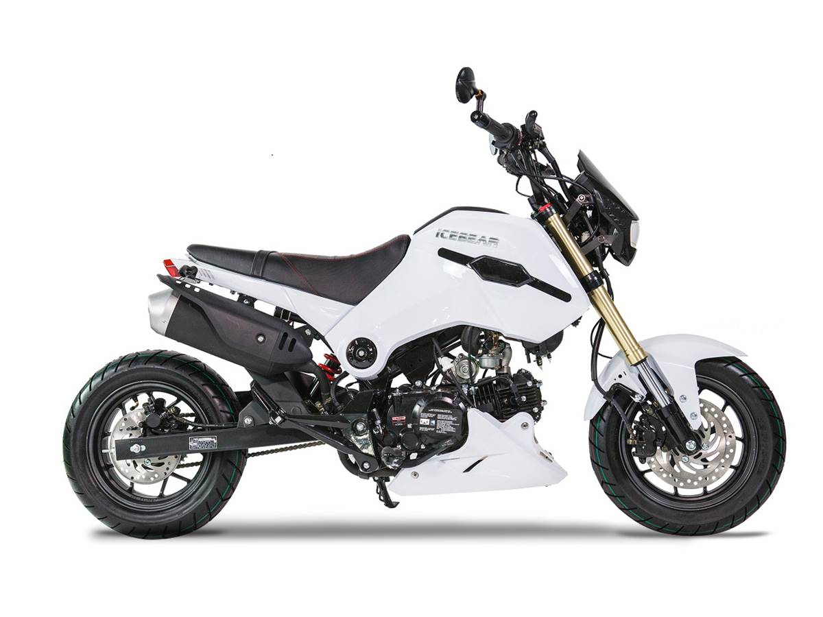 2020 Icebear Fuerza 125cc in Largo, Florida