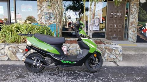 2017 Wolf Brand Scooters RX50 in Largo, Florida