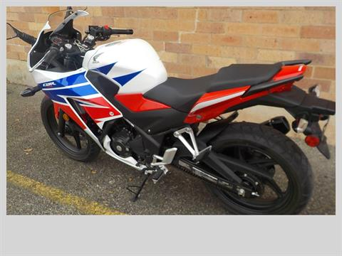 2015 Honda CBR®300R ABS in San Antonio, Texas - Photo 6