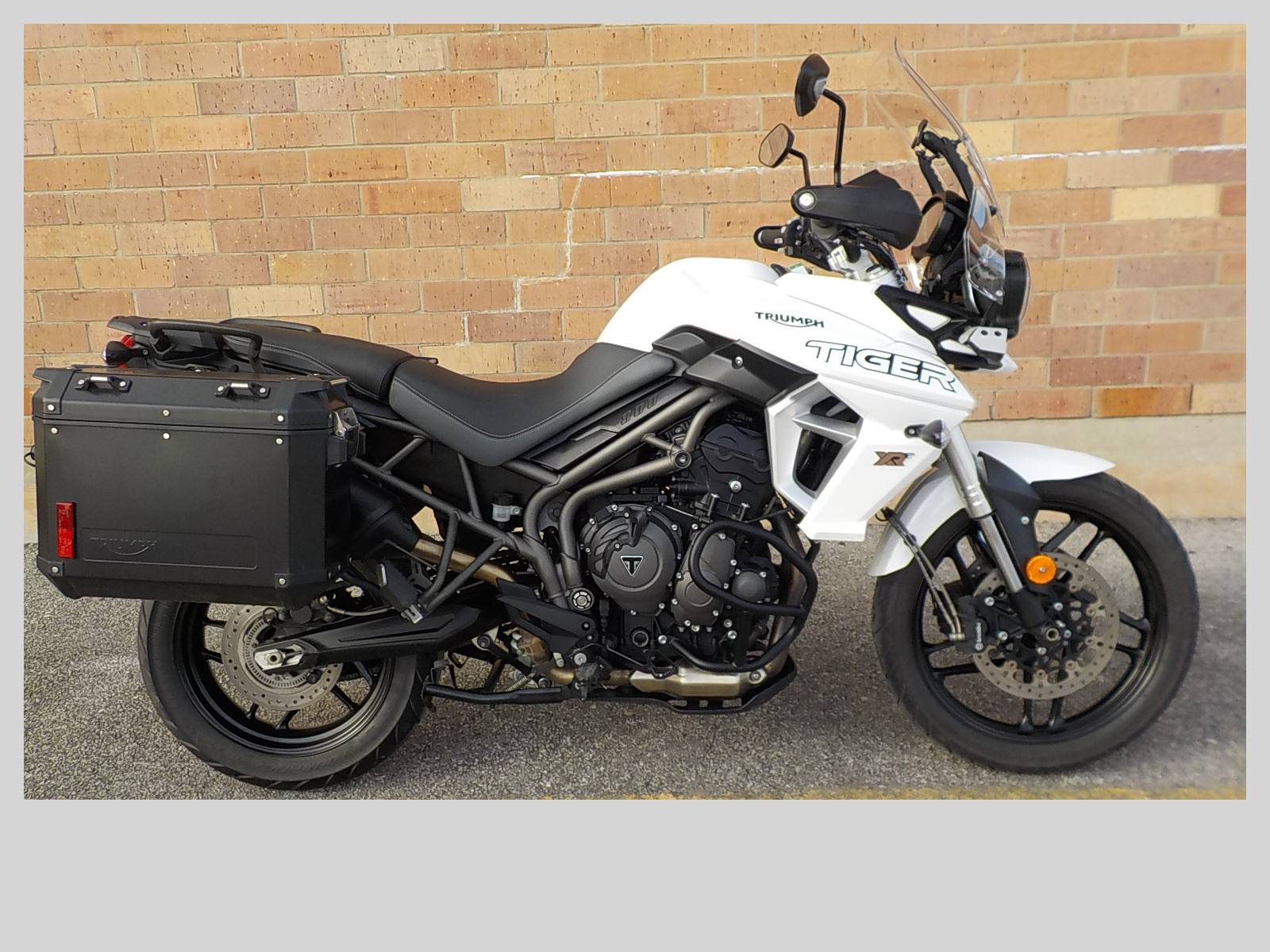 2019 Triumph Tiger 800 XRt in San Antonio, Texas - Photo 8
