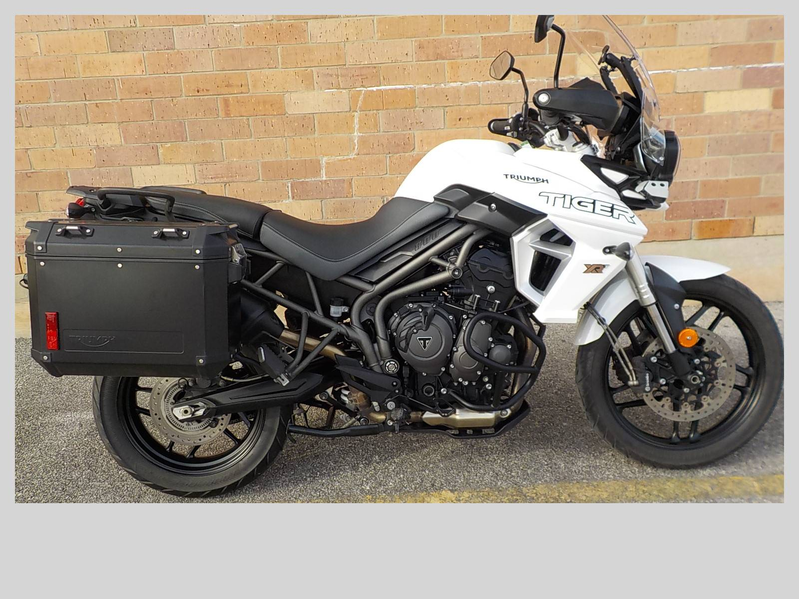 2019 Triumph Tiger 800 XRt in San Antonio, Texas - Photo 1
