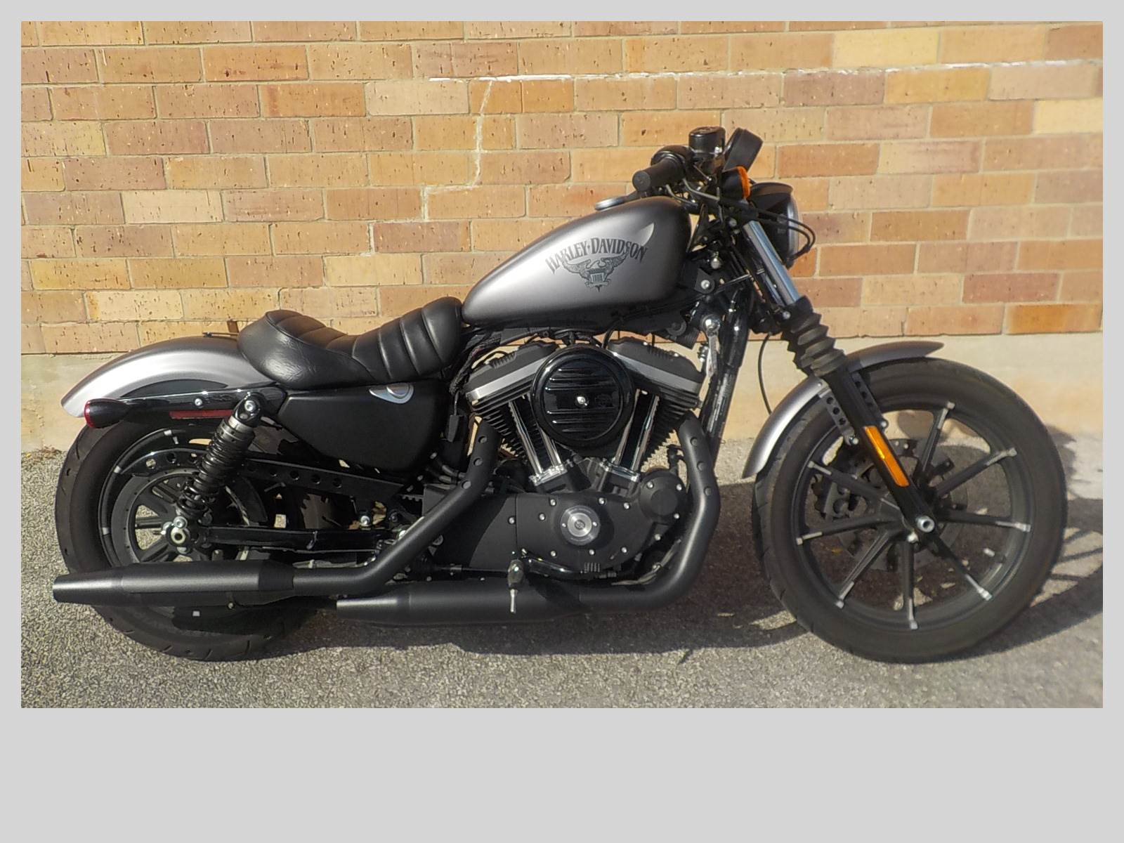 used 2017 harley davidson iron 883 motorcycles in san antonio tx stock number 766. Black Bedroom Furniture Sets. Home Design Ideas