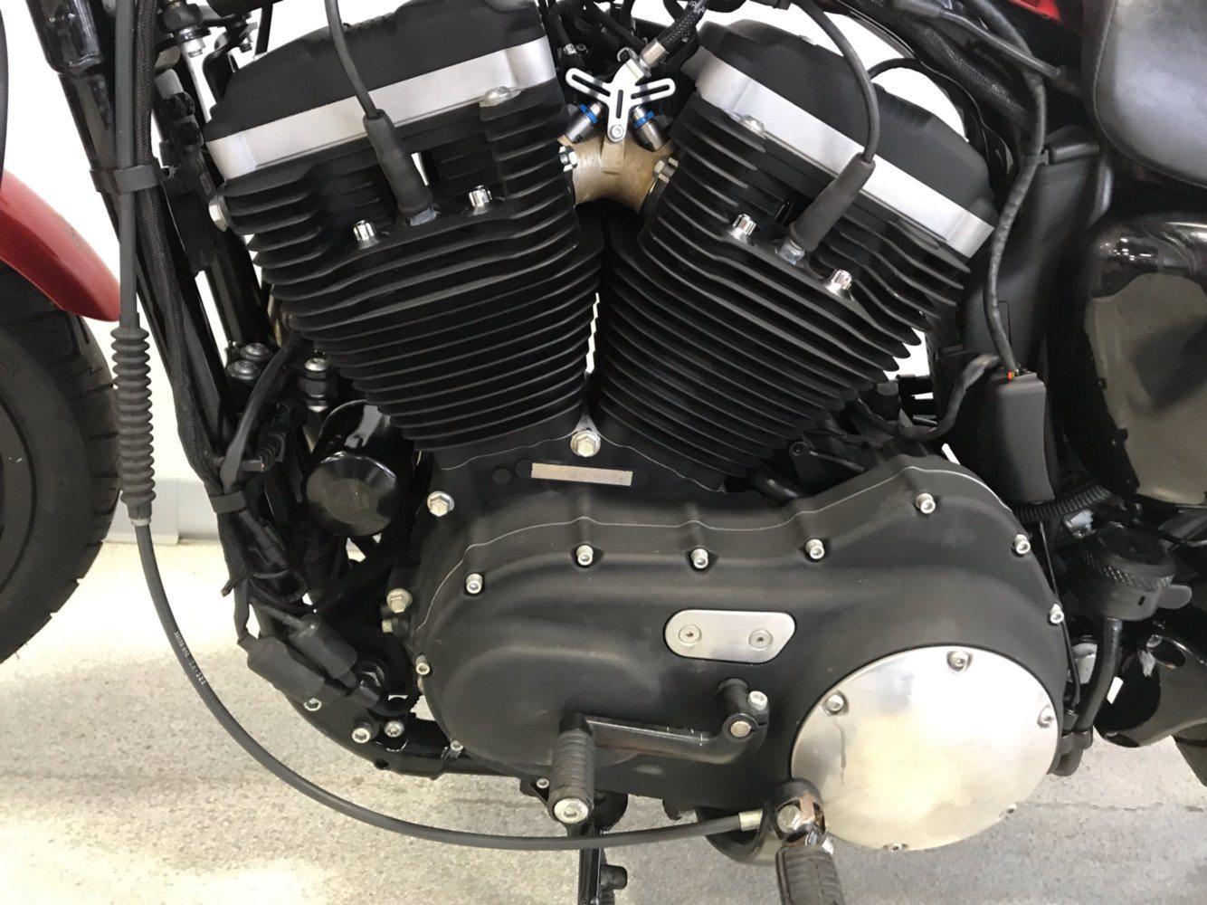 2013 Harley-Davidson Sportster® Iron 883™ in Springfield, Missouri
