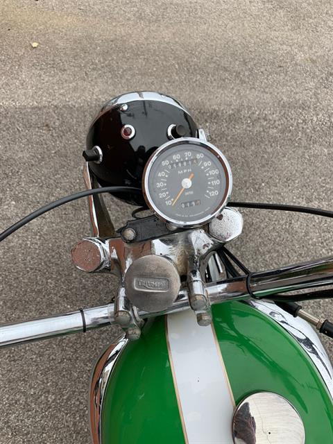 1966 Triumph T100C Trophy in Cleveland, Ohio - Photo 6