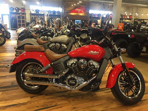 2016 Indian Scout™ in North Canton, Ohio