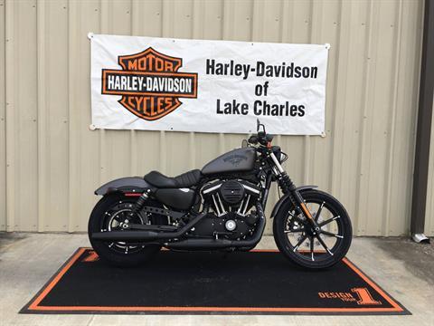 2017 Harley-Davidson Iron 883™ in Lake Charles, Louisiana