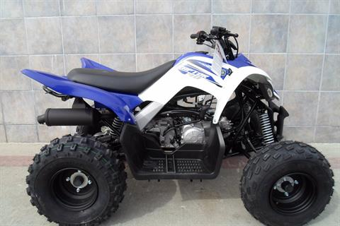 2018 Yamaha Raptor 90 in San Marcos, California