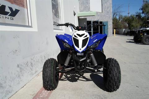 2019 Yamaha Raptor 90 in San Marcos, California - Photo 5