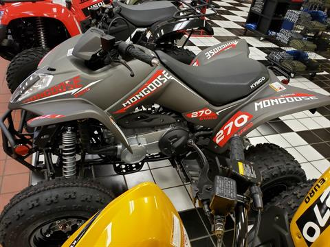 2020 Kymco Mongoose 270 Euro in Tulsa, Oklahoma - Photo 1