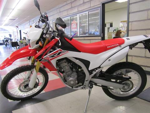 2015 Honda CRF®250L in Colorado Springs, Colorado