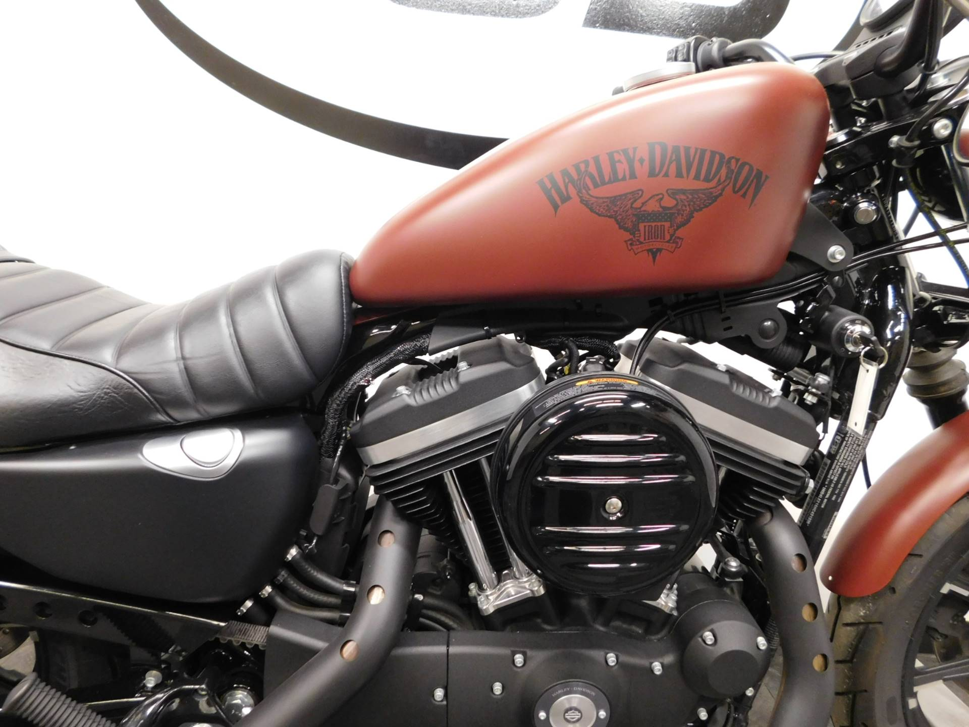 2017 Harley-Davidson Iron 883™ in Eden Prairie, Minnesota - Photo 34