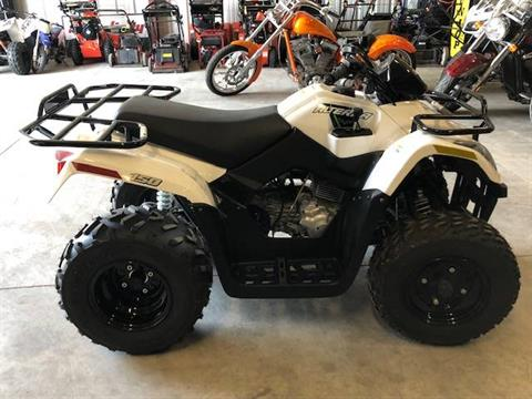 2018 Textron Off Road Alterra 150 in Francis Creek, Wisconsin - Photo 2