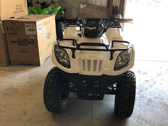 2018 Textron Off Road Alterra 150 in Francis Creek, Wisconsin - Photo 3