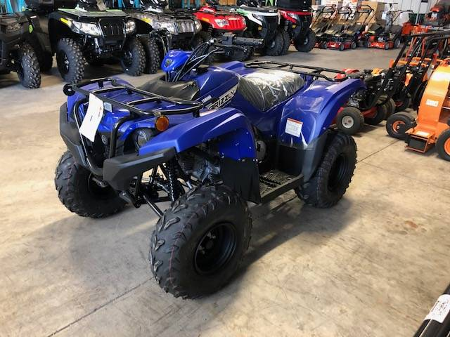2019 Yamaha Grizzly 90 in Francis Creek, Wisconsin - Photo 1