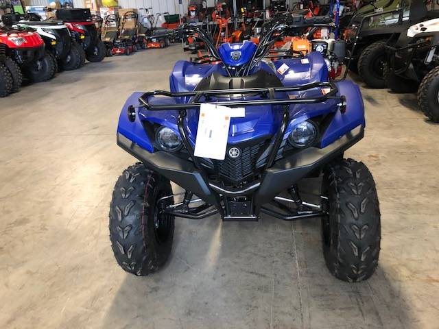 2019 Yamaha Grizzly 90 in Francis Creek, Wisconsin - Photo 3