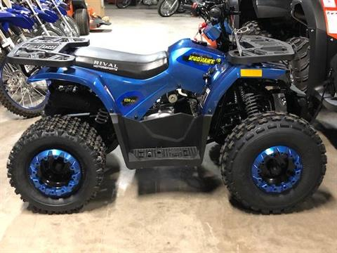 2019 RIVAL Mudhawk10 in Francis Creek, Wisconsin - Photo 3