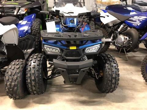 2019 RIVAL Mudhawk10 in Francis Creek, Wisconsin - Photo 4