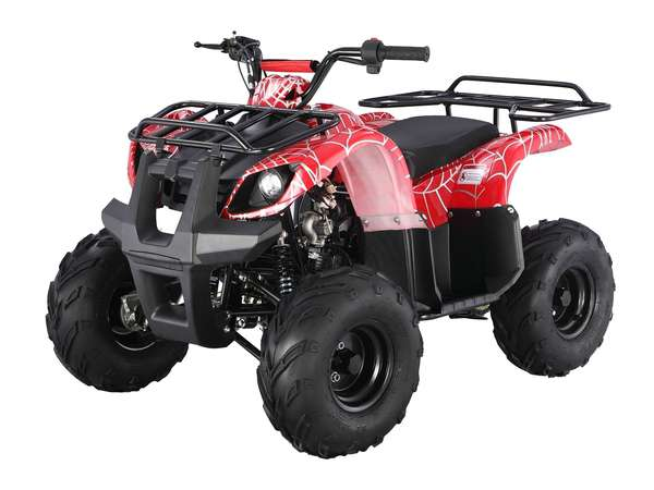2015 Taotao USA 125 Automatic Kids quad in Howell, Michigan - Photo 1