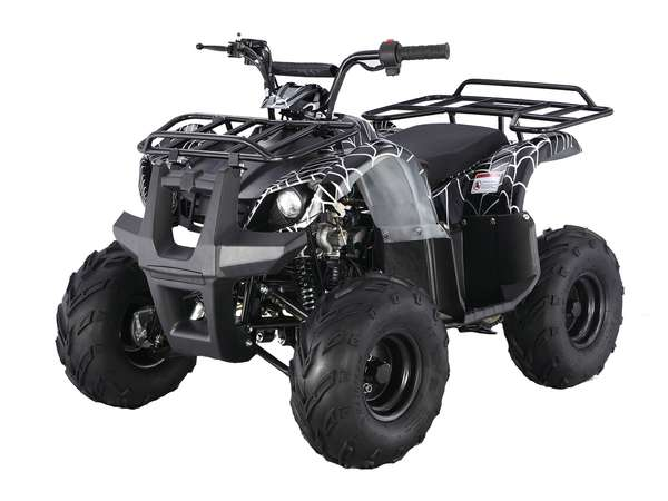 2015 Taotao USA 125 Automatic Kids quad in Howell, Michigan - Photo 2